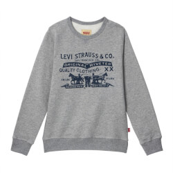 Skøn KIDS sweatshirt fra Levis - China Grey