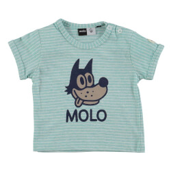 Molo Einar t-shirt i tasty green