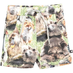 Simroy shorts med hairy animals print fra molo 3S18H101-4684 set forfra