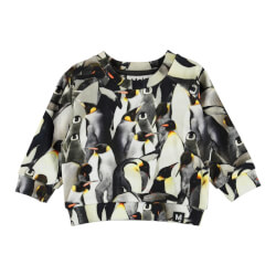 Molo - Dag Sweatshirt Penguins Galore